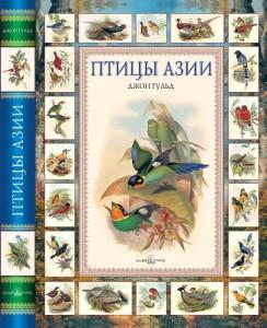 azia_birds